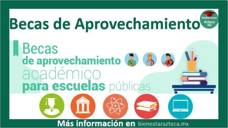 Beca de Aprovechamiento Académico para Escuelas Públicas