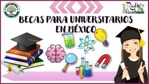 Becas para universitarios en México: Convocatoria